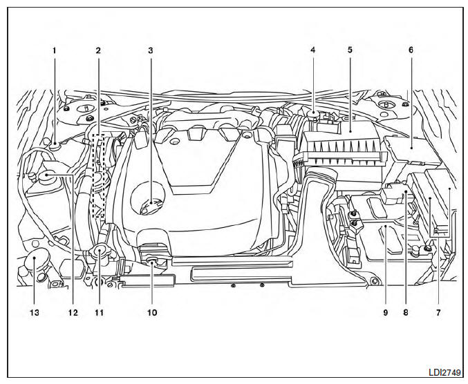 Nissan Maxima. Engine compartment check locations